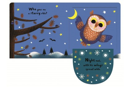 My Favourite Owl (Campbell My Favourite Series)