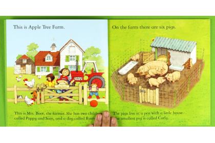 Usborne Farmyard Tales Complete Collection (20 books)