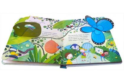 Usborne Peep Inside Collection (6 books)