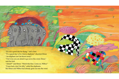 Elmer Collection (10 books)