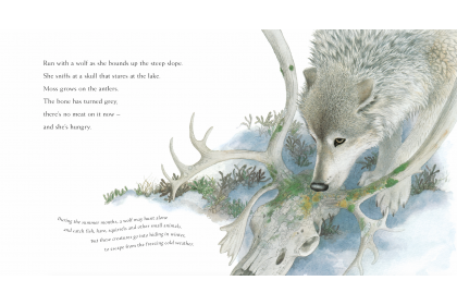 Nature Stories Collection (10 books)