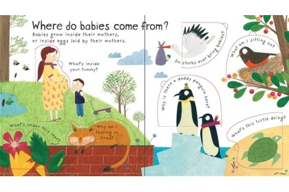 Usborne Lift-the-flap First Questions and Answers Collection (5 books)