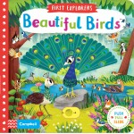 Beautiful Birds (Campbell First Explorers Series)