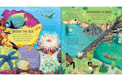 Usborne Look Inside Collection Collection (6 books)
