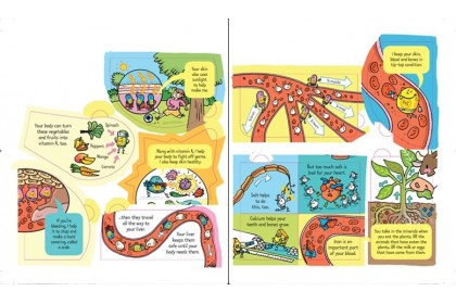 Usborne Look Inside What Happens When You Eat
