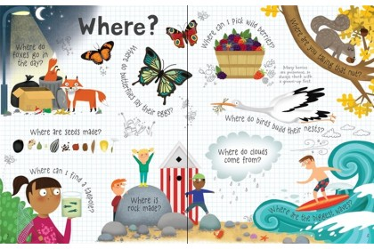 Usborne Lift-the-Flap Questions & Answers Nature