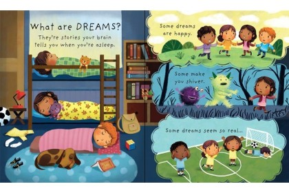 Usborne Lift-the-Flap Very First Q & A (What is Sleep and Why Should I Brush My Teeth) Collection (2 books)