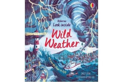 Usborne Look Inside Wild Weather