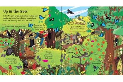 Usborne Look Inside the Jungle