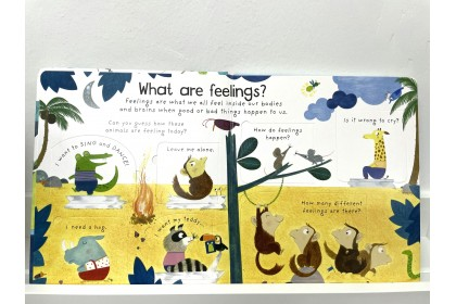 Usborne Lift-the-Flap First Q&A What are Feelings?