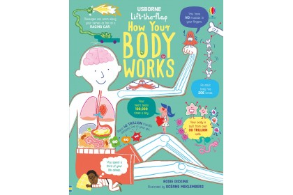 Usborne Lift-the-Flap How Your Body Works