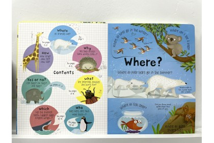 Usborne Lift-the-Flap Q&A about Animals
